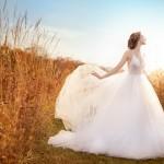 jim-hjelm-bridal-tulle-ball-sheer-sequin-embroidered-bodice-v-neckline-natural-open-back-sweep-train-8610_zm