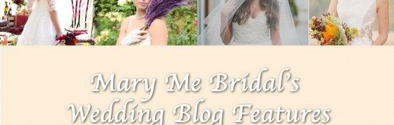 mary me blog posts3